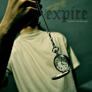 Expire Cover Art