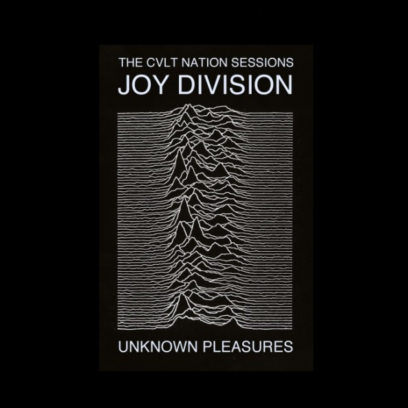 Joy-Division_Unknown-Pleasures_Shes-Lost-Control-1979-650x650