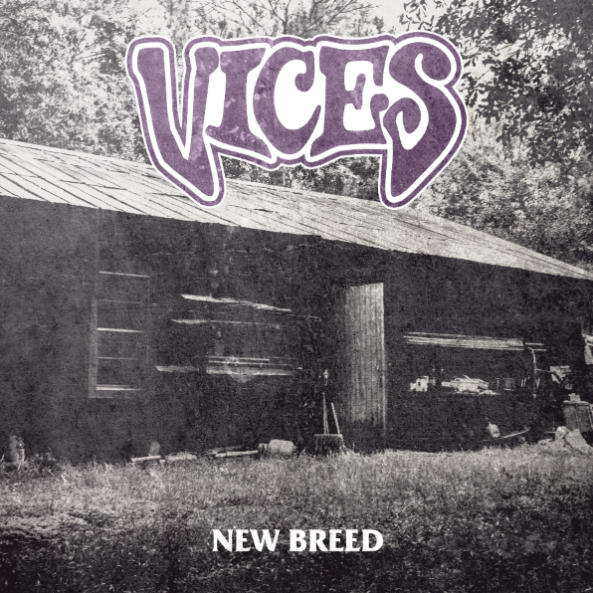 VICES cover web