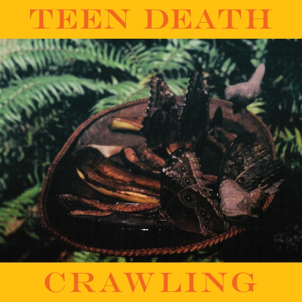 teen-death-crawling